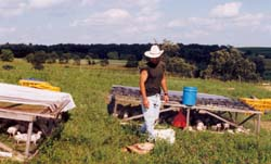 Moving pastured poultry pens