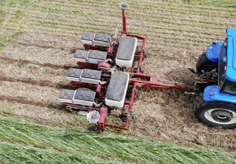 Tractor tilling crops