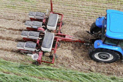 Tractor tilling crops in a field